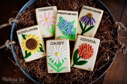 seed-tray