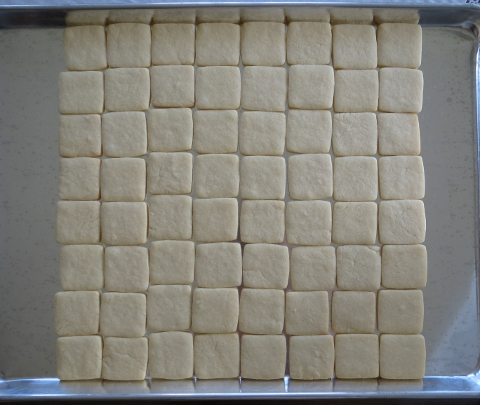 Minecraft cookie squares