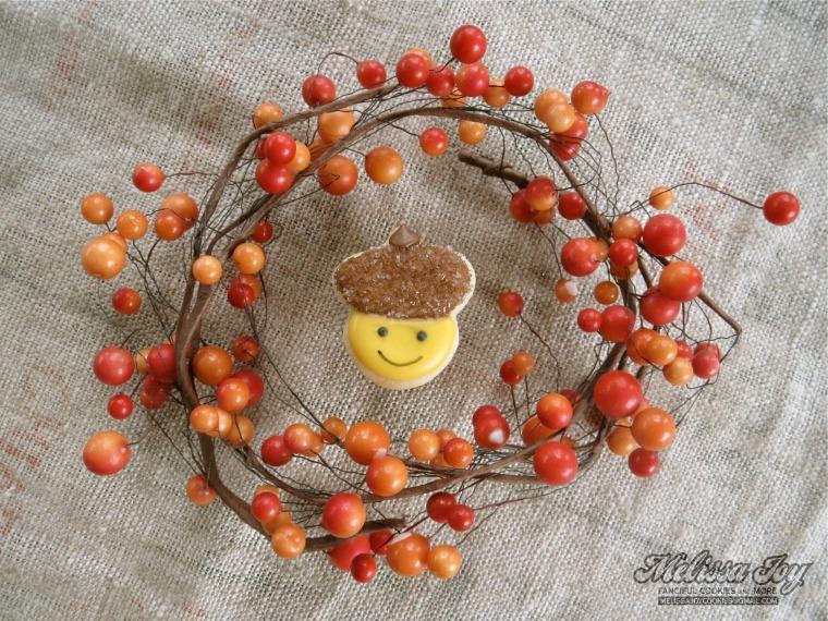 little acorn cookie by melissa joy