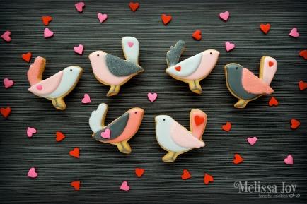 love-birds-cover